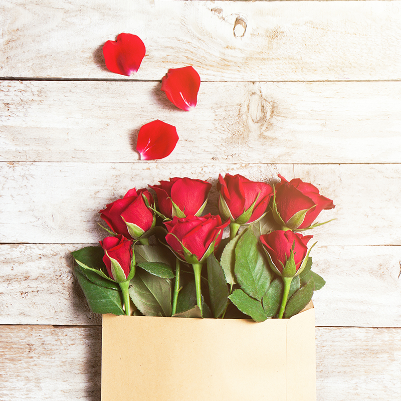 Roses - An ideal gift