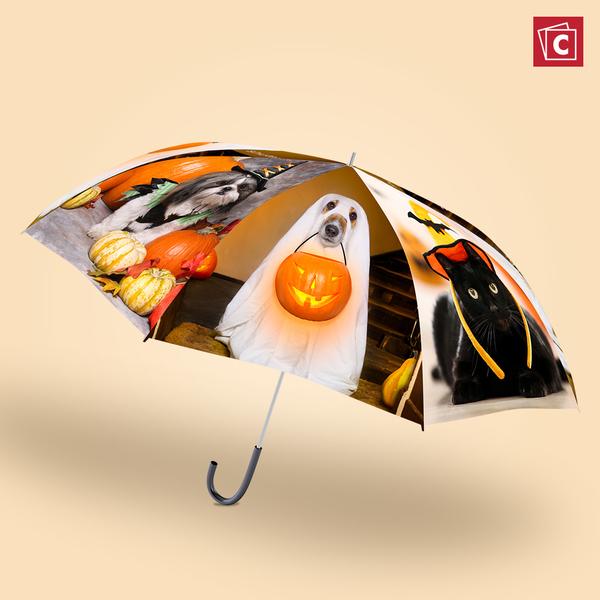 Photo Umbrellas