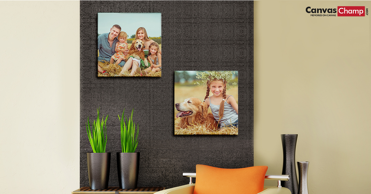 Pet Canvas Prints