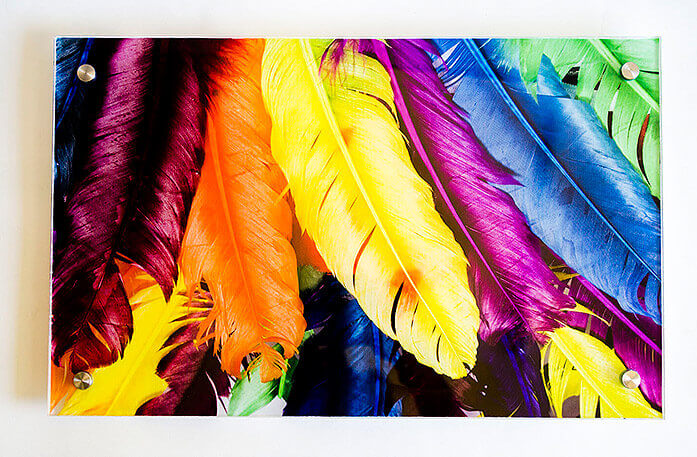 Colorful Feather picture on Acrylic